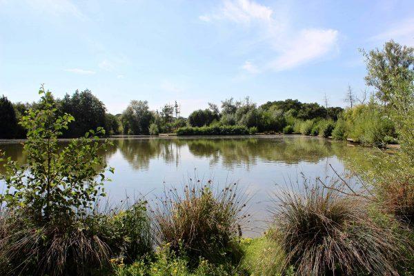main-lake-6