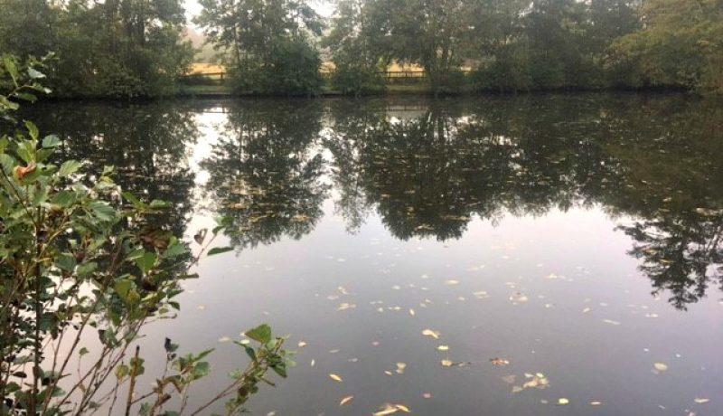 lily-lake_crow-green-fishery